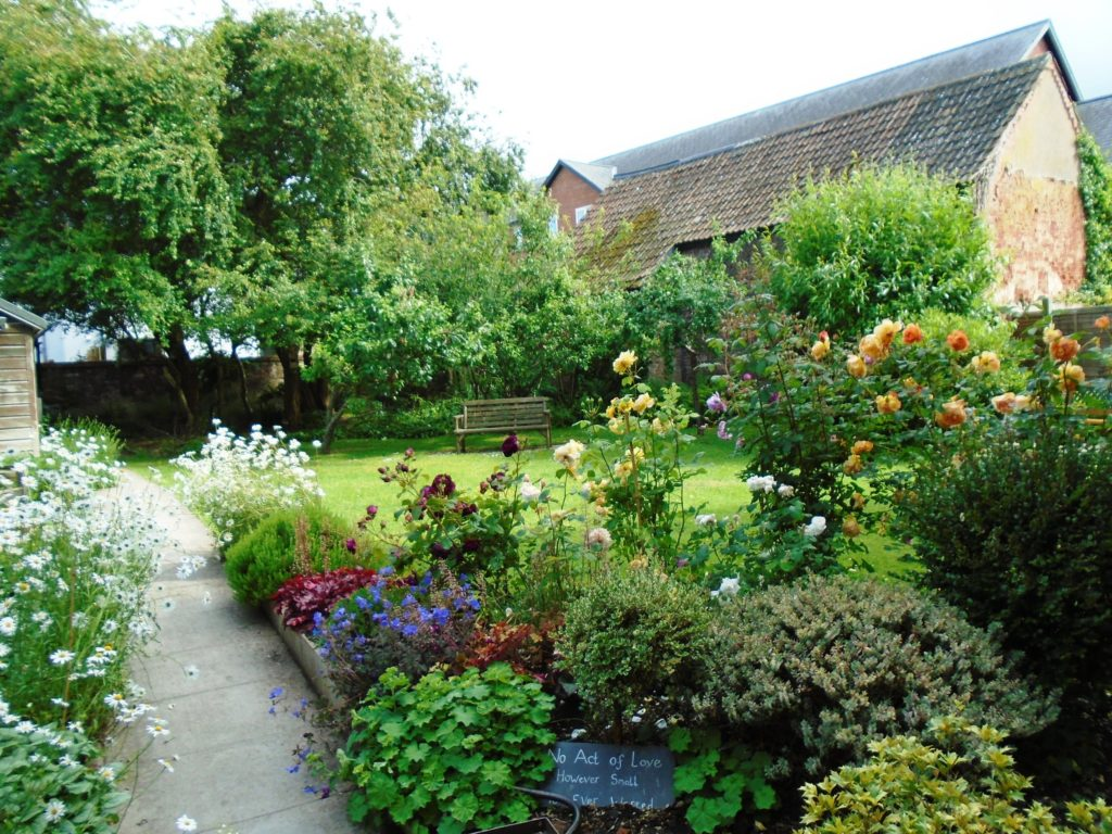 Beautiful Peace Garden